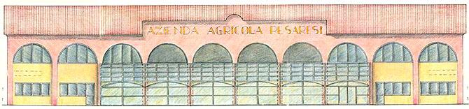 Azienda Agricola Pesaresi a Rimini Architetto Giovanna Giuccioli